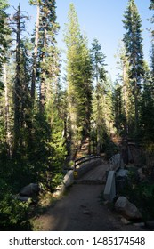 Backpacking through the Emigrant Wilderness on a long weekend.