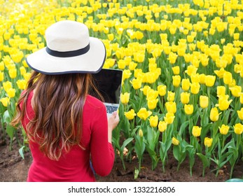 Backside of Agriculturist wear hat and holding laptop in hands for recording about yellow tulips garden in the park.