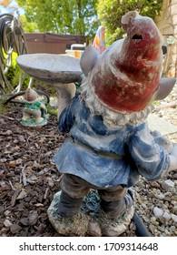 The Backside of a Garden Gnome