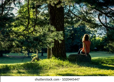 Backside view on young woman sitting in the park of Oslo next to the tree and enjoying beautiful sunset, Norway.