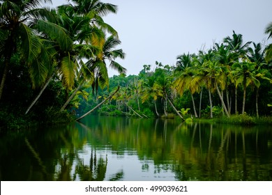The Backwaters-Kerala This is the Poorvar Backwater and is located in Kerala India. The place is an ideal set up for enjoying the serene beauti of Kerala also known as  God's Own Country.