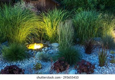 Backyard Garden illumination. Garden with Small Illuminated Pond