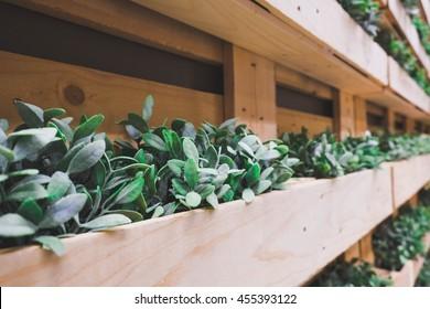backyard garden in wood flowerpot panel. vintage concept