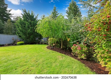 Backyard landscape with green lawn,trees, blooming bushes