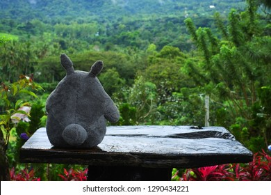 Bacolod City/Philippines - December 31, 2018: Back shot of Totoro character on a table outdoors