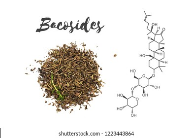 Bacosides chemical structure (specifically bacoside A) and Bacopa monnieri herb, known as Brahmi in Ayurveda - isolated on white background.