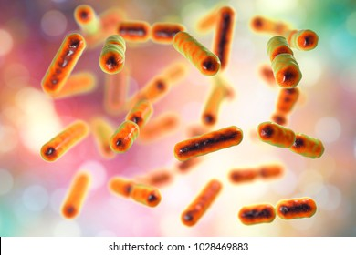 Bacteria Bacteroides fragilis, one of the major components of normal microbiome of human intestine, 3D illustration