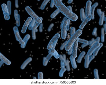 Bacteria, Microbes, Salmonella Bacteria, Bacterial colony
