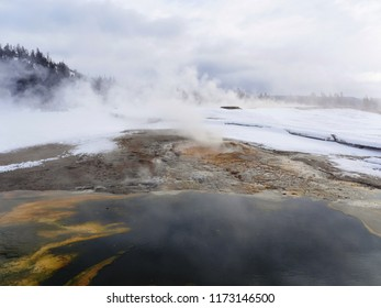 Bacterial mats and snow - Yellowstone National Park, USA, in winter