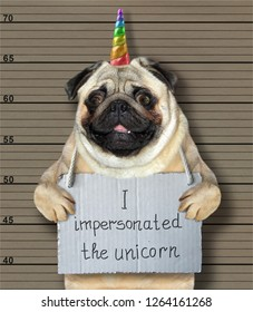 The bad dog impersonated the unicorn. He arrested by the police for this crime and sent to prison. Lineup background.