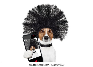 bad hair day dog ready to look beautiful at the wellness spa salon, isolated on white background, taking selfie with smartphone or tablet