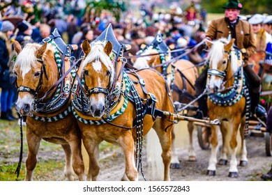 Bad Toelz, Germany - November 6: people with traditional clothes at the annual horse-carriage procession with blessing, named leonhardifahrt on November 6, 2019 in bad toelz, germany