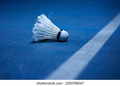Badminton ball near the badminton court line