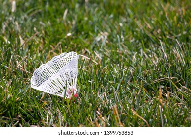 Badminton birdie in the green grass.
