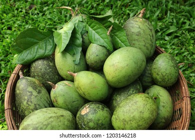 Bael fruit (Aegle marmelos,Wood apple ,Matoom) .The fruit is typically eaten fresh, dried, or in juice form.Bael fruit can help treat certain health conditions, including digestive disorders.