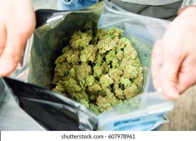 Bag of Cannabis