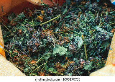 Bag with collection of dry herbs such as St. John's Wort, Matryoshka, currant leaves, mint, lemon balm