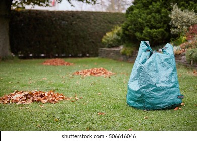 Bag for leaves and pile of brown leaves on the green grass in the garden