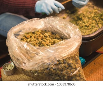 A bag sits filled with buds near worker trimming cannabis flower.