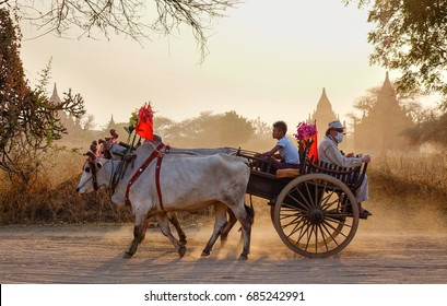 Bagan, Myanmar - Feb 19, 2016. An ox cart running on dusty road at sunset in Bagan, Myanmar. Bagan in central Burma is one of the worlds greatest archeological sites.