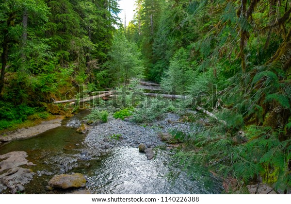 Bagby Hot Springs Oregon Stock Photo (Edit Now) 1140226388