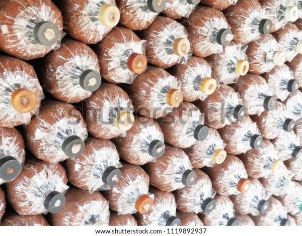 Bags Substrate Ingredients Mushroom Spawn Stock Photo (Edit
