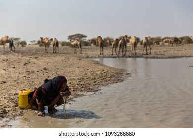 Bagurimi, Chad - January-18/2017. Woman drinking water from a dirty pond.