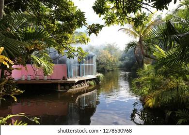 Bahamas, Freeport; Garden of the Groves