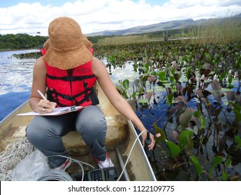Andaraí, Bahia / Brazil - June 28, 2011 -   Female biologist measuring abiotic parameters of the water during a biological expedition in Chapada Diamantina, Bahia, Brazil