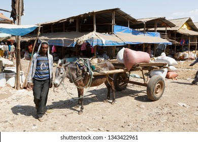 Bahir Dar, Ethiopia, February 14 2015: A donkey carriage with a farmer standing by on a market to transport goods