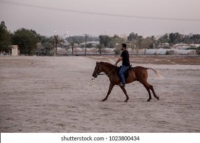 A Bahraini man rides his horse at dusk. Karbabad, Bahrain October 1, 2017.