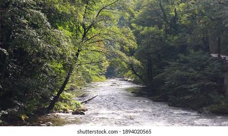 Baile Herculane town Romania Cerna river landscape - Shutterstock ID 1894020565