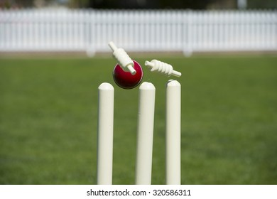 Bails fly from cricket stumps as ball hits on grass field
