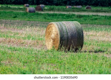 bails of hey on a field