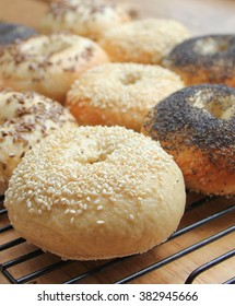 Baked authentic bagels with poppy seeds, sesame seeds and flax seeds