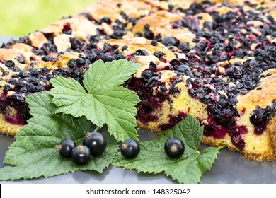 baked cake with black currant