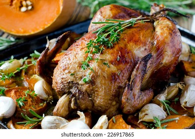 Baked chicken with pumpkin and herbs