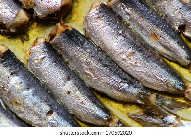 Baked greek sardines in the oven with olive oil