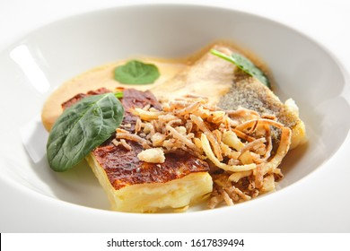Baked halibut fillet with parsnip cream, fresh spinach and gourmet sauce on restaurant plate isolated. Grilled sea food, white fish, pollock or cod steak and deep fried onions closeup