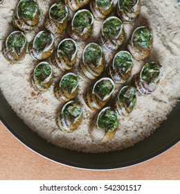 Baked snails in a garlic parsley butter on a pan with bread crumbs. Garden snails cooked at home as escargot à la Bourguignonne recipe. Photo taken from above, selective focus.
