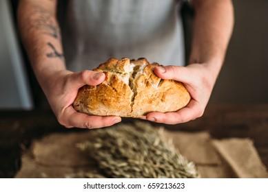 Baker hands breaks in half fresh baked bread loaf