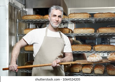 Baker. A handsome baker with a loaf of fresh bread standing in the bakery.