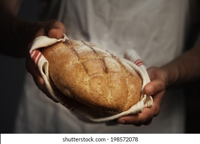 Baker man holding a warm bread
