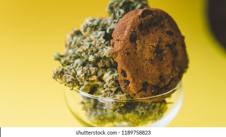 Baking cookies from cannabis close-up.