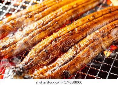 Cuisine d'anguilles au Japon