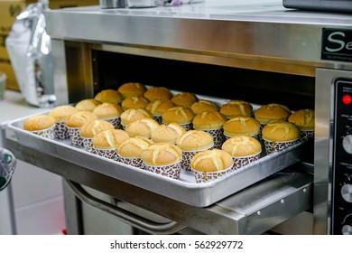 baking fresh handmade cupcake in oven