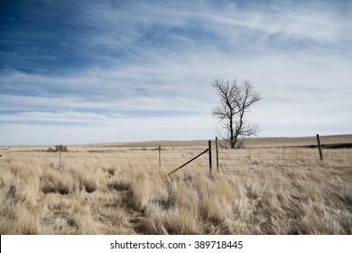 Bakken Blues Badlands A Site From Sidney Montana