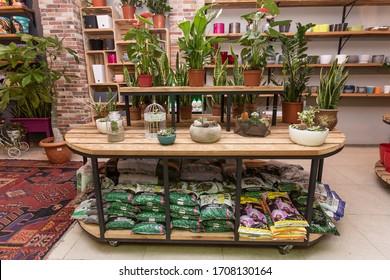 Baku, Narimanov / Azerbaijan - 24-11-2019: Big table, stool, showcase in the garden, plant shop