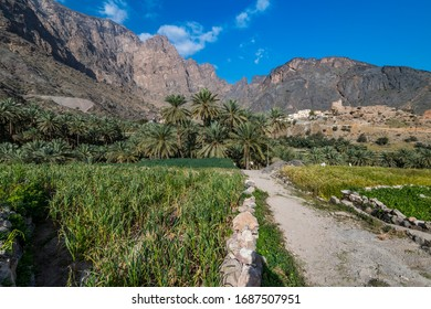Balad Sayt is a mountain village tucked between the Western Hajar mountains bordering the Dakhiliyah and Batinah regions of Oman, and is part of wilayat Al Rustaq in the South Batinah Governorate.
