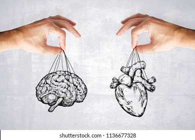 balance your life, logic and feel concept with heart and brain in hands at grey background.